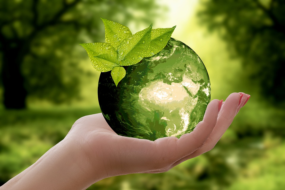 O que é Engenharia Ambiental?